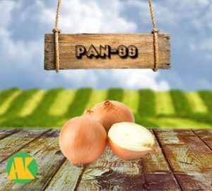 PAN88-sogan-thmb