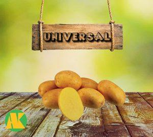 universal_patates_thmb